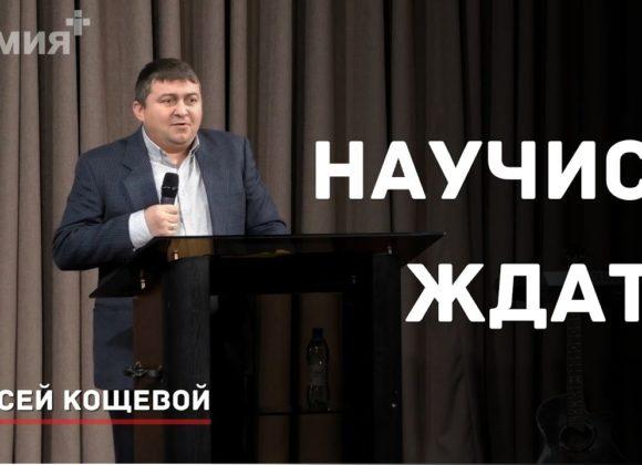 Научись ждать   Алексей Кощевой  